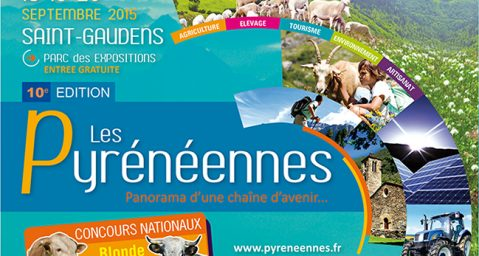 r4282_164_les_pyreneennes-2_thumbnail